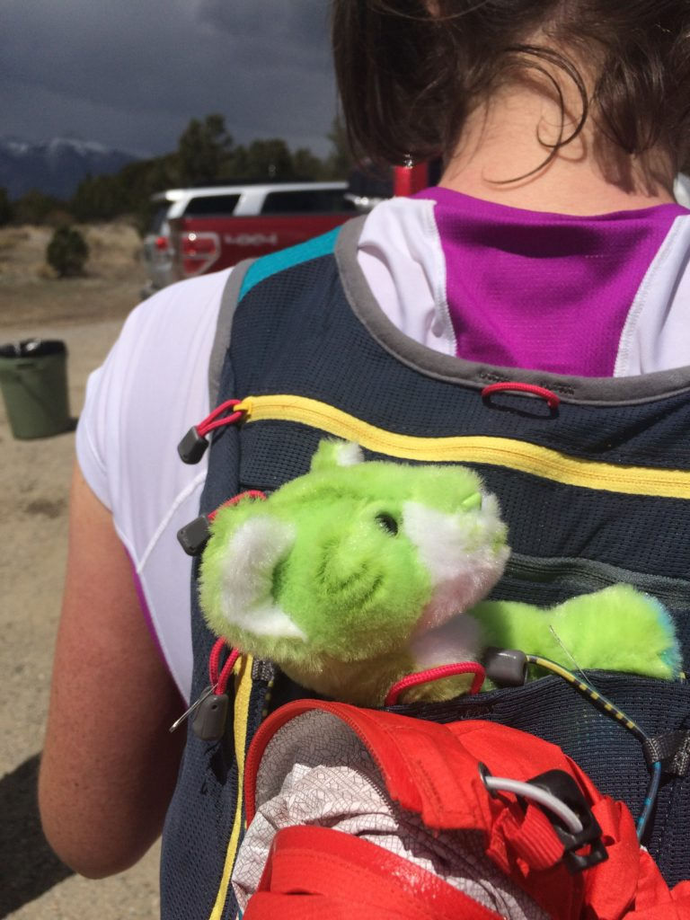 """I ran with my own """"little lion"""" in Arturo's honor at the Collegiate Peaks 50 in Colorado this year."""